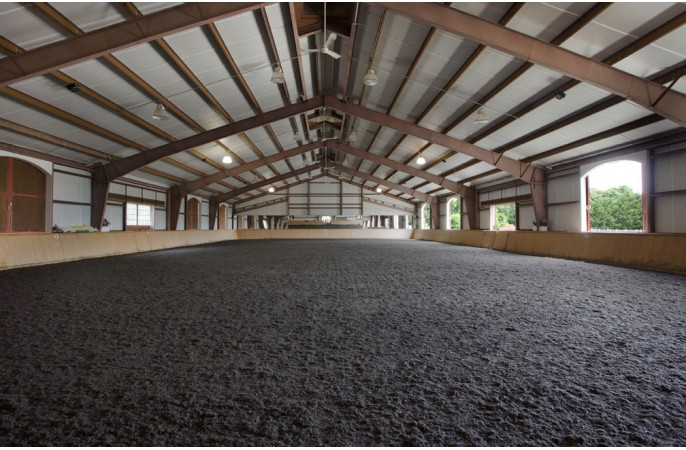 <span>indoor arena</span>